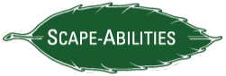 Scape-Abilities